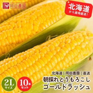 とうもろこしゴールドラッシュ 北海道産トウモロコシ朝採れ直送(2Lサイズ×10本セット)