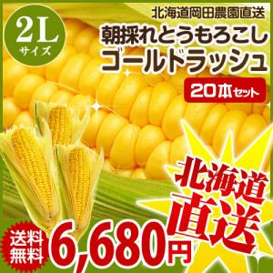 とうもろこしゴールドラッシュ 北海道産トウモロコシ朝採れ直送(L〜2Lサイズ×20本セット)|okadanouen