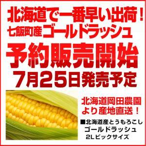 とうもろこしゴールドラッシュ 北海道産トウモロコシ朝採れ直送(L〜2Lサイズ×20本セット)|okadanouen|02