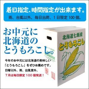 とうもろこしゴールドラッシュ 北海道産トウモロコシ朝採れ直送(2Lサイズ×20本セット)|okadanouen|07