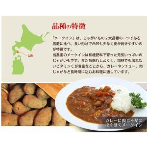 セール じゃがいも 北海道産 メークイン (10kg/MLサイズ)/ 産地直送 低農薬 送料無料|okadanouen|03