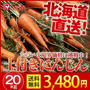 土付き にんじん 北海道産 (20kg/ S〜Lサイズ)  産地直送/  低農薬/ 送料無料 okadanouen