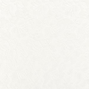 生地 ラッセルレース(12887) 2.オフ白 (B)_at_|okadaya-ec