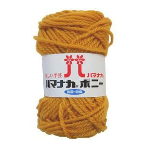 毛糸 『ハマナカ ボニー 491番色』 Hamanaka ハマナカの商品画像|ナビ
