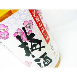 さつまの梅酒 1.8L 魔王の蔵元「白玉醸造」|okadayasaketen|05
