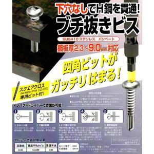 水上金属 ブチ抜きビス 下穴なしで貫通!!! SUS410ステンレスパシペート|okaidoku-kiyosi