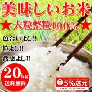 30年産 大粒業務用米20kg【10kg×2袋】|okaman