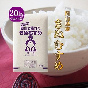 新米 お米 20kg きぬむすめ 令和元年岡山産 (5kg×4袋) 送料無料|okaman