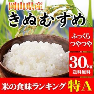 29年岡山県産きぬむすめ30kg【5kg×6袋】...