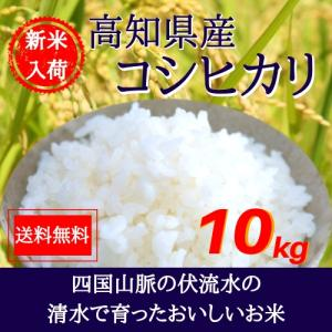 29年産 高知県土佐山田産コシヒカリ10kg【5kg×2袋】...