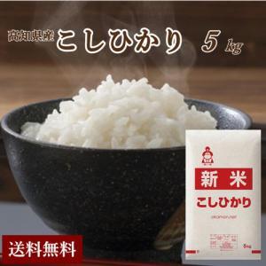 29年産 高知県土佐山田産コシヒカリ5kg【お試し価格/10...