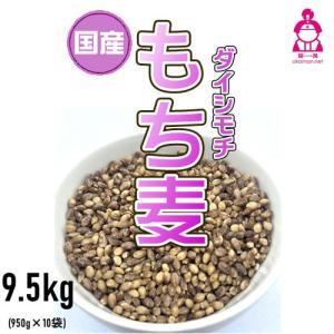 新麦 国産 もち麦 ダイシモチ (950g×10袋) チャック付 令和元年岡山県産 お買い得パック|okaman