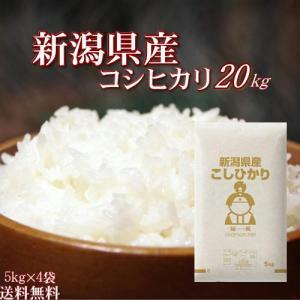29年産新潟県産こしひかり20kg【5kg×4袋】 送料無料...