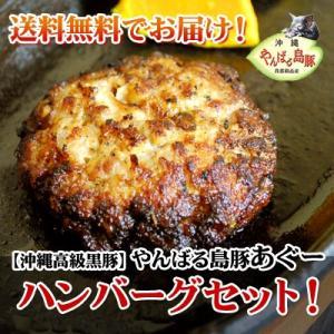 アグー豚 あぐー豚 ハンバーグ 冷凍 沖縄 ギフト 内祝い 120g/20個 20人前