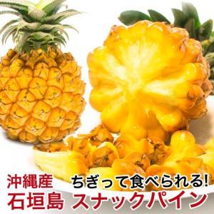 スナックパイン 石垣島 沖縄 の紹介  今が旬の 美味しい 沖縄 パイナップル ちぎって芯まで食べら...