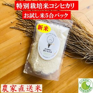 令和2年産 特別栽培米コシヒカリ お試し米 900g 精白米 一等 石川県産 70%以上農薬減 100%有機肥料 安心安全 生産農家 農家直送米 送料込み|okamotonojostore