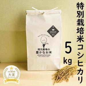 特別栽培米 白米 4.5キロ 豊コシヒカリ|okamotonojostore
