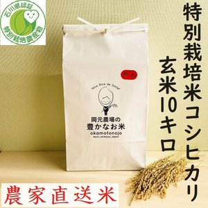 令和2年産 特別栽培米コシヒカリ お米 10kg 玄米 一等 石川県産 70%以上農薬減 100%有機肥料 安心安全 生産農家 農家直送米 送料込み|okamotonojostore