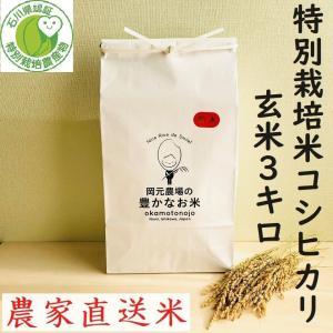 令和2年産 特別栽培米コシヒカリ お米 3kg 玄米 一等 石川県産 70%以上農薬減 100%有機肥料 安心安全 生産農家 農家直送米 送料込み|okamotonojostore