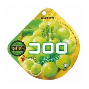 UHA味覚糖 コロロ マスカット 40g 6コ入り