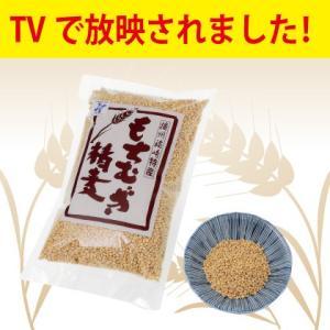 もちむぎ食品センター もち麦 精麦 300g 国産 福崎町産 栄養豊富 ダイエット