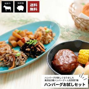 ハンバーグお試しセット (国産 洋食 肉 お惣菜セット おかず パーティ オードブル ディナー 送料無料)