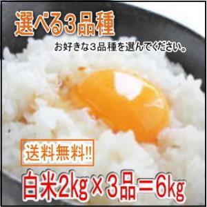 送料無料 白米6kg 選べる3品 お試しセット(2kg×3品...