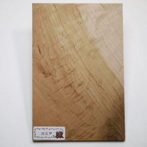 木のはがき カエデ|okazaki-seizai