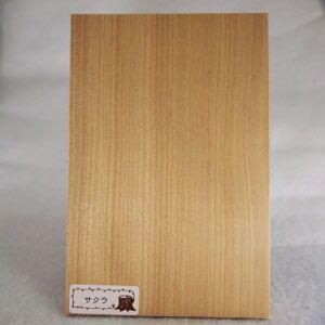 木のはがき サクラ|okazaki-seizai