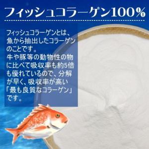 フィッシュコラーゲン 粉末300g 送料無料 フィッシュ コラーゲン (魚由来のマリンコラーゲン)粉末 300g入り 【フィッシュコラーゲン300g入り】|okfruit|02