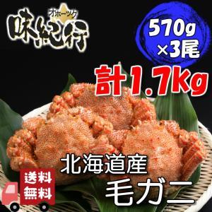 毛ガニ 北海道産 約570g×3尾入り ボイル済 送料無料 即日発送 カニ かに 蟹