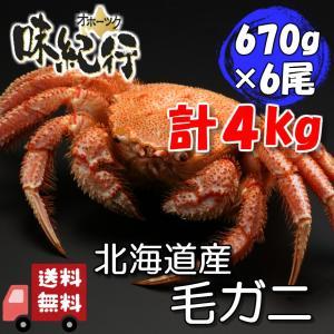 毛ガニ 北海道産 約670g×6尾入り 計約4kg ボイル済 ギフト 送料無料 カニ かに 蟹 015×6