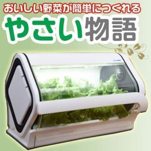 おいしい野菜が室内で水だけでできる