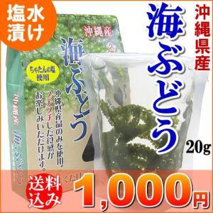 海ぶどう 久米島産 20g タレ付き 送料込 海ブドウ 10...