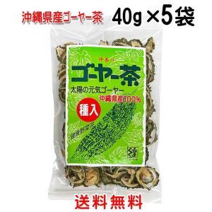 (沖縄県産)仲善ゴーヤー茶(種入り)袋入り40g×5袋セット【送料無料】|okiken