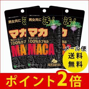 マカ100% 45カプセル 三供堂 メール便送料無料 マカ ...