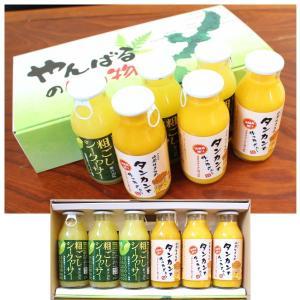 【2018年207セット売れた大人気ギフトセット】  沖縄の人気柑橘をジュースにしました。 そのまま...