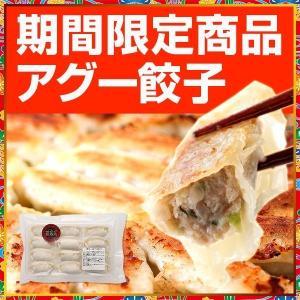 沖縄餃子 選べる沖縄餃子8パックセット 96個入り【送料無料】|okinawagyuza|05