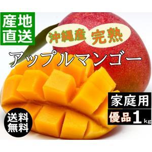 沖縄産マンゴー 1kg 家庭用 新鮮 甘くて 美味しい 2玉〜4玉入り アップルマンゴー 沖縄糸満産 産地直送 早い者勝ち okinawalover