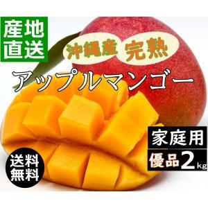 沖縄産マンゴー 2kg 家庭用 新鮮 甘くて 美味しい 4玉〜6玉入り アップルマンゴー 沖縄糸満産 産地直送 早い者勝ち okinawalover