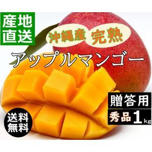 沖縄産マンゴー 1kg 贈答用 新鮮 甘くて 美味しい 2玉〜4玉入り アップルマンゴー 沖縄糸満産 産地直送 早い者勝ち okinawalover