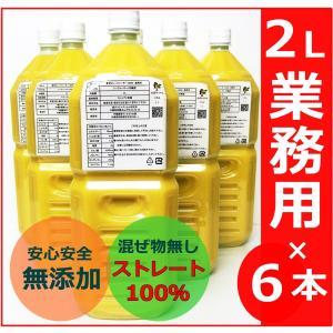 青切り シークヮーサー 2L 原液 シークワーサー ストレート ジュース 2000ml 沖縄産 大宜...