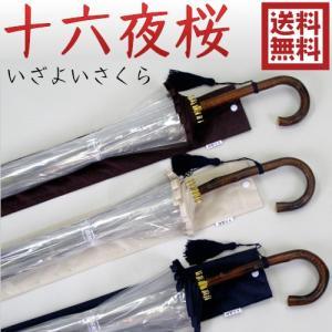 十六夜桜(いざよいさくら) 送料無料|okinawangirls