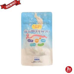 乳酸菌 サプリ ダイエット 極み菌活生サプリ 31粒 3袋セット|okinawangirls