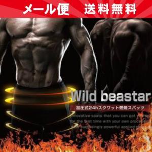 Wild beaster ワイルドビースター okinawangirls