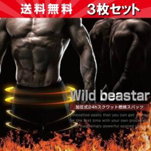 Wild beaster ワイルドビースター 3個セット okinawangirls