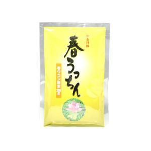 仲善(なかぜん)春うっちん粉(袋入200g) okinawashimashop20