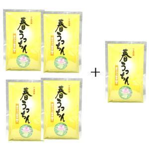 仲善(なかぜん)春うっちん粉(袋入200g)【4個に1個サービス】 okinawashimashop20