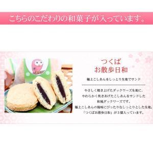 送料無料 和菓子詰合せ 満天星|okinayawagashi|04