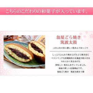 送料無料 和菓子詰合せ 満天星|okinayawagashi|06